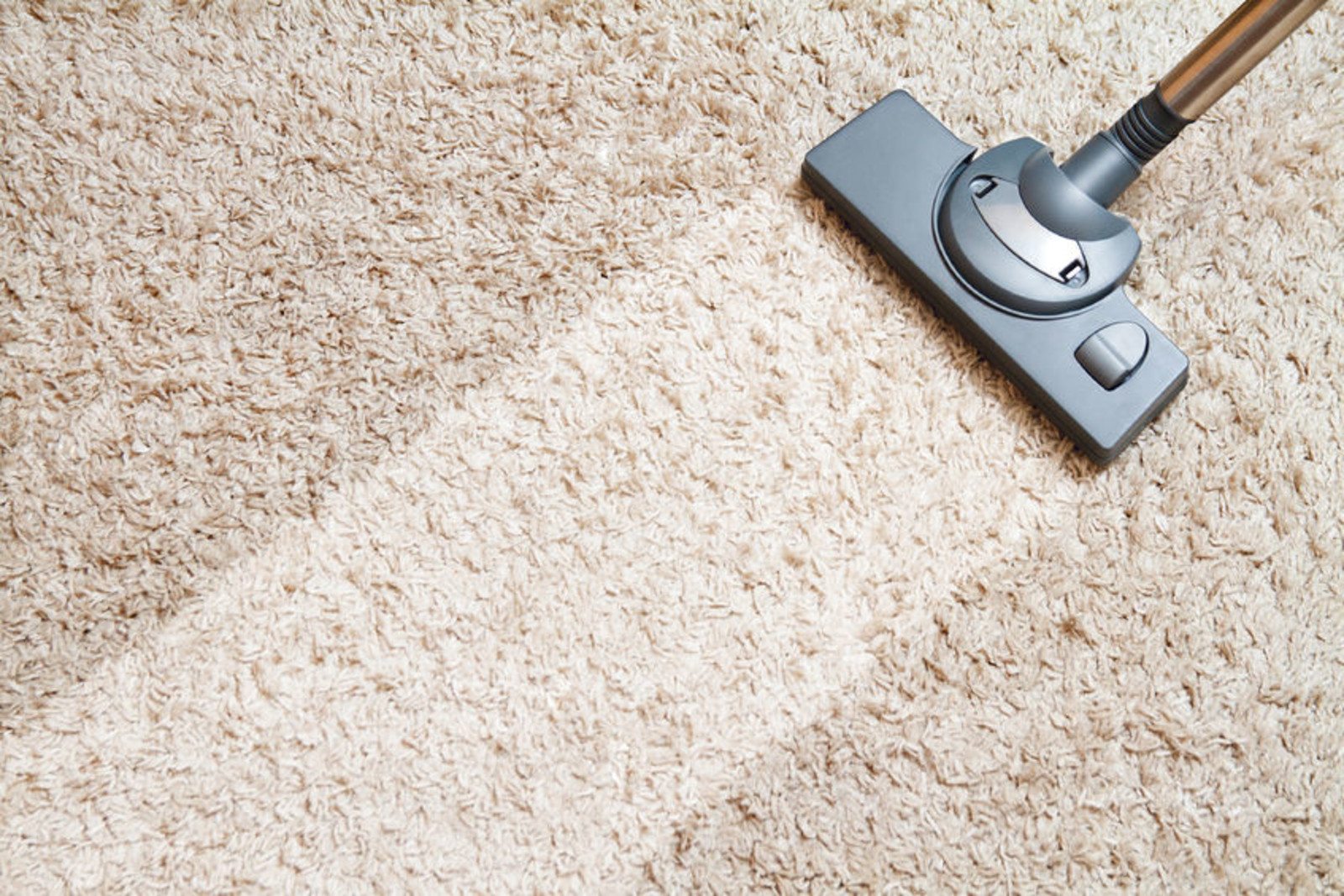 Normal Dirt Wear And Tear On Rugs In All Rooms